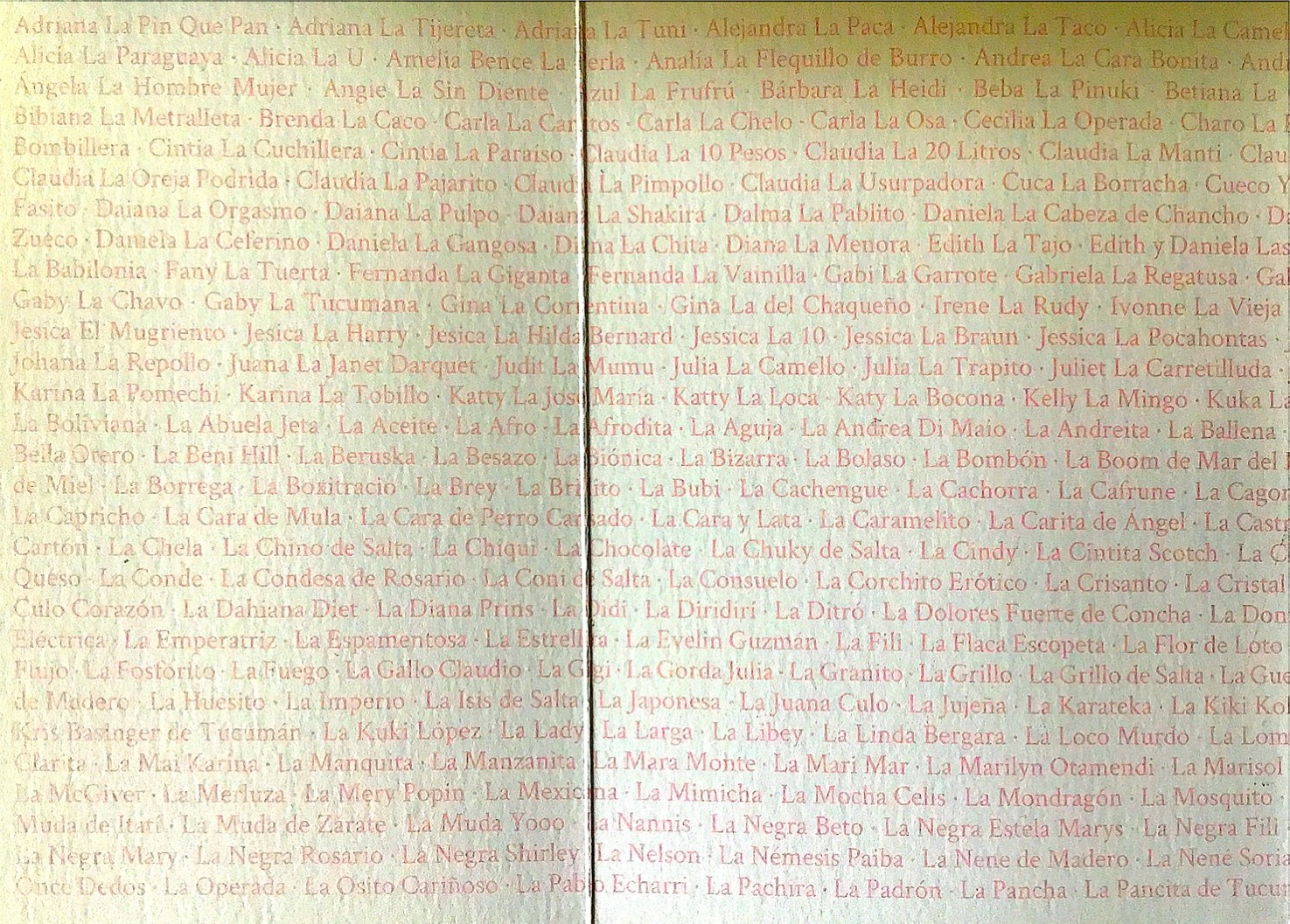Foldout flap from the Archivo de la Memoria Trans Argentina
